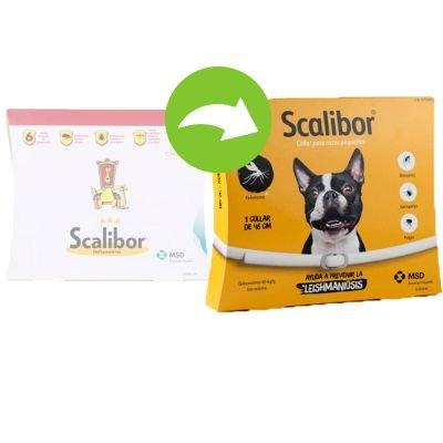 SCALIBOR Protector Band–Anti-Parasiten für Hunde gegen die Leishmaniose, Bianco, Piccola e Media (48 cm) - Pet Farmacia Fiala