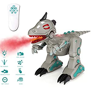 deAO RC Electric Dinosaur Toy Remote Control Infrared Spray Intelligent Roaring Dancing Rotating Dinosaur with Flashing LED light and Somking Effect