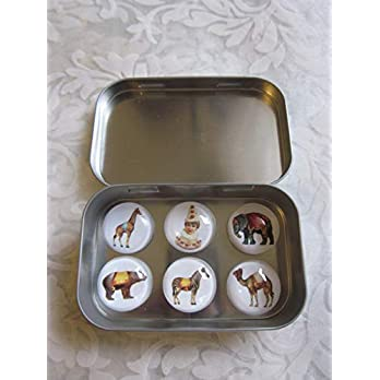 "Magnete Kühlschrankmagnete Zirkus Elefant Bär Kamel Zebra Clown Vintage Stil 6er Set""Manège"" Cabochon-Durchmesser 2,5 cm, Metallbox 94 x 59 x 20 mm Geschenkidee nostalgisches Präsent Mitbringsel"