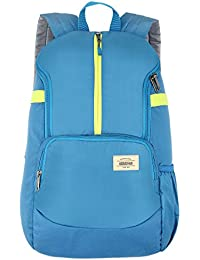 American Tourister Copa 22 Ltrs Teal Casual Backpack (FU9 (0) 11 002)
