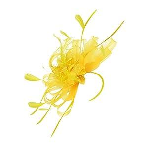 Bonarty Fascinator Hütchen Haarreif Haarschmuck Federn Mesh Bowknot Cocktail Federhut Haarklammer Hochzeit Kopfschmuck