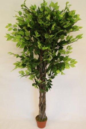 kunstliche-pflanzen-16-m-hoch-kunstlicher-ficus-benjamina-mit-topf-kunstlicher-ficus