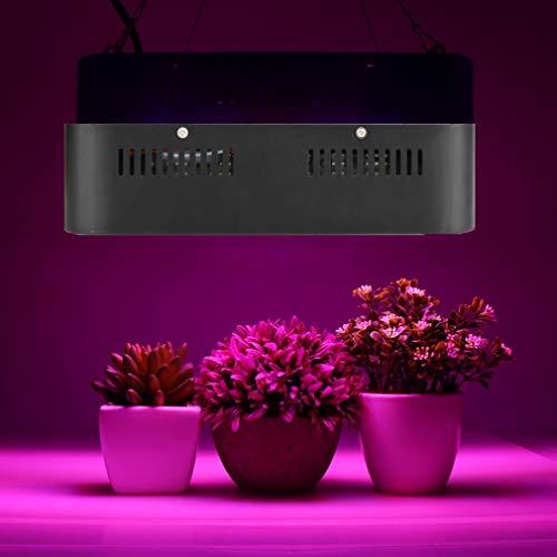 Whengx COB LED Wachsen Licht Full Spectrum 500W, Wachsen Indoor LED Anlage Wachsen Lampe für Hydroponischen Treibhauspflanze Alle Bühne Wachstum Beleuchtung für Home Office Wohnzimmer