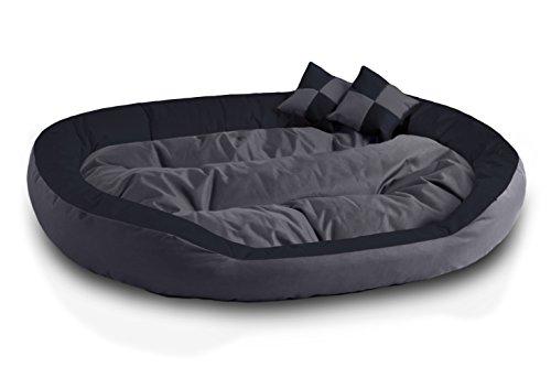 Beddog 4 in 1 letto per cane saba l fino a xxxl, 7 colori a scelta, cuscino per cane, divano per cane, cestino per cane, antracite/grigio xxxl