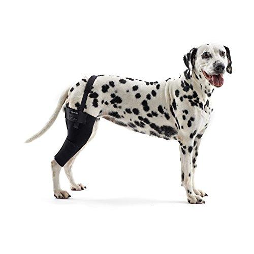 Kruuse Rehab Knie-Schutz für Hunde (XX-Large - Links) (Schwarz)