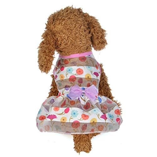 AMURAO Sommer Hund Kleid Haustier Katze Schmetterling Cartoon Print Bogen Kuchen Rock Kostüme Haustier Spitze verziert Kleidung