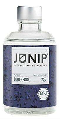 Infuseur bouteille de thé, eau et cocktail JUNIP | 100% BIO sans additifs artificiels ni sucres ajoutés | Faible en calories | myrtille