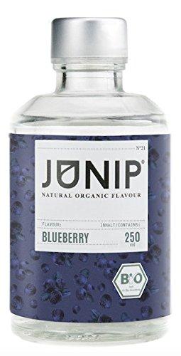 Carb Low Kaffee Sirup (Blaubeer Sirup ohne Zucker von JUNIP | Ideale Glutenfreie Lebensmittel zum Wasser Geschmack, Tee oder Cocktails pimpen | 100% BIO Sirup ohne Süßstoff)