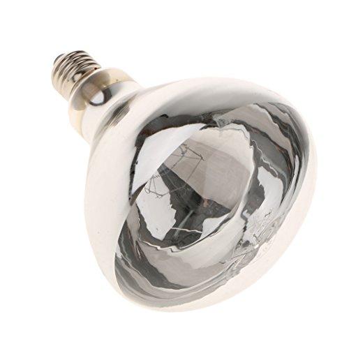 Gazechimp Superhelle E27 Wärmestrahler, Wärmelampe und Strahler - Beleuchtung für Terrarium Terrarien Lampe - Leistung Wahl - Typ 1 - 100W