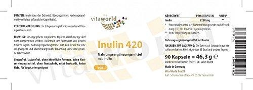3er Pack Vita World Inulin 420mg 3 x 90 Kapseln Deutsche Apotheker-Herstellung – 2520mg Tagesportion – Ballaststoffe