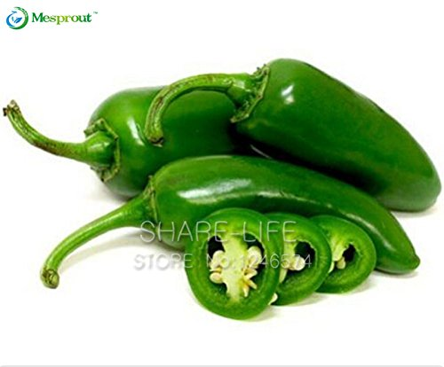 100 seeds / pack, Green Vegetable Jalapeno Chilli Pepper, Mexico Super Hot  Pepper