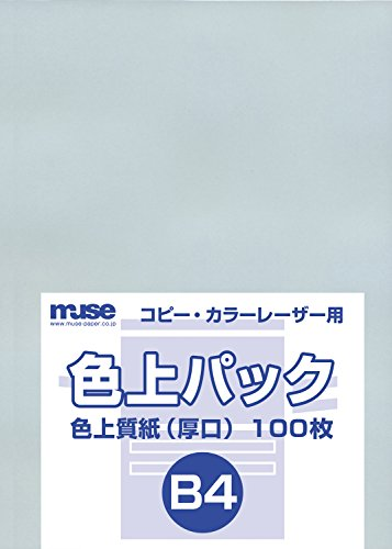 Input 100 water mortar B4 standard Muse color quality pack (japan import)