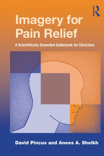 Imagery for Pain Relief: A Scientifically Grounded Guidebook for Clinicians (English Edition)