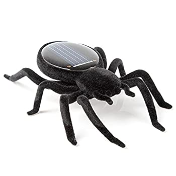 Solar Power Energy Toy,amamary Smallest Solar Power Mini Toy Car Racer + Spider Robot + Grasshopper Robot + Cockroach Robot Educational Solar Powered Toy Gadget Gift (Spider) 3