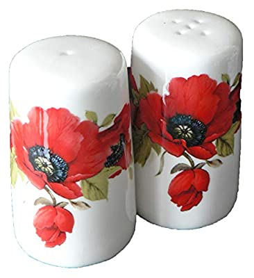 Poppy pattern salt and pepper set - Bone china cruet set decorated all round with bright colourful poppies by crackinchina