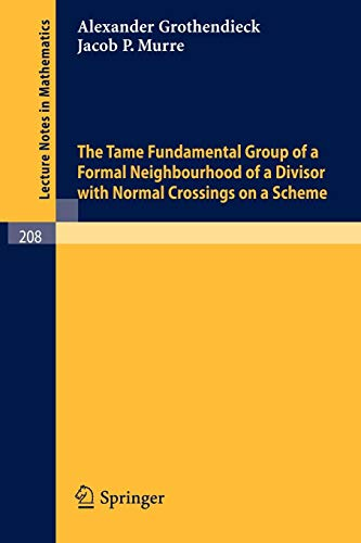 The Tame Fundamental Group of a Formal Neighbourhood of a Divisor with Normal Crossings on a Scheme (Lecture Notes in Mathematics (208), Band 208)