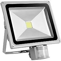 Awhao® Foco Reflector LED 10W 20W 30W 50W 100W Luz de inundación de inducción Foco Proyector LED Iluminación de exterior Blanco frío (50W)