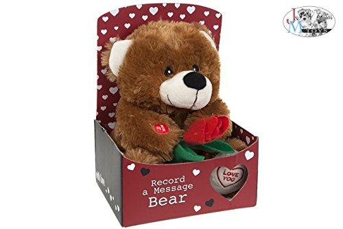 PMS Bär in Geschenkbox, zum Aufnehmen Einer Nachricht, 22,9cm - Nachricht Bären