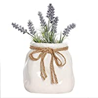 Dibor White Ceramic Sack Shaped Planter Indoor House Plant Decorative Flower Pot