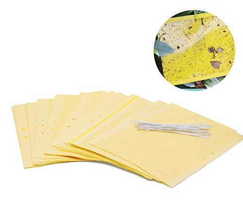 Plai 30 Stück Fliegenfänger Sticker inkl. 30 Kabelbinder