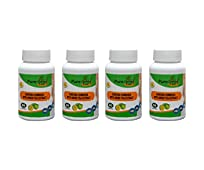 Pure natural herb Fat Burner - Garcinia Cambogia With Green Tea Extract 70% HCA- 60 Capsules Weight Loss Supplement Combo (Pack of 4)