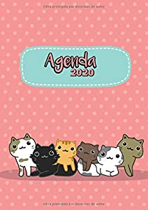 Agenda  2020: Tema Gatos