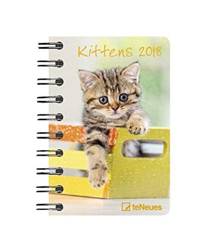 Kittens 2018 - Tierkalender, Buchkalender, Pocket Diary - 8,8 x 13 cm