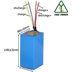 YOSE POWER E-Bike Pedelec, Elektrofahrrad Lithium-Ionen LG Zellen Akku Set 24V10.4Ah Ersaztakku ohne Aufladegerät passt für Silver Fish Batterie