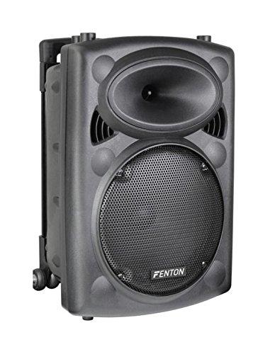 Fenton FPS10 - Sistema portátil de Sonido 10', Color Negro
