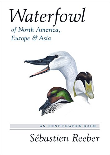 Waterfowl of North America, Europe, and Asia – An Identification Guide
