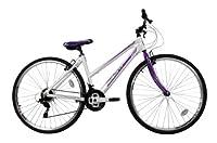 Falcon Women's Modena Hybrid Bike - (White/Purple, 12+ Years, 17 Inch, 27.55 Inch) from Falcon