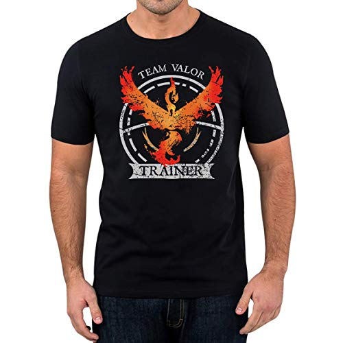 T-Shirt Team Valor Fun Shirt Nerd Gaming Trendy (M)