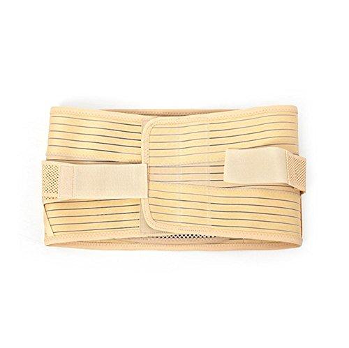 JHKJ Premium-Qualität Rücken Brace Mit Abnehmbaren Arterien Rücken Gürtel Für Schmerzen Relief und Verletzungen Prävention Support Belt Für Die Behandlung Von Ischias, Skoliose