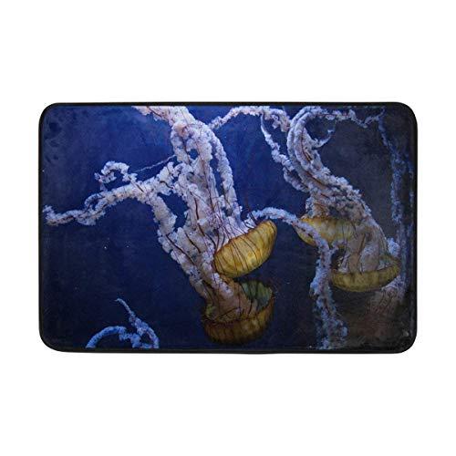 BriHutt Jellyfish Ocean Non Slip Doormat Entrance Mat 23.6 x 15.7 inches