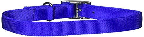 Artikelbild: Coastal Products Nylon Double Dog Overall Collar Adjustable Durable Blue 1'X24'