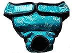 Natural Home Weiblich Hunde läufigkeitshöschen Schutzhose Haustier Unterhose Welpenhose für Große/Kleine Hunde Läufigkeit (S, Bow Lake Blue)