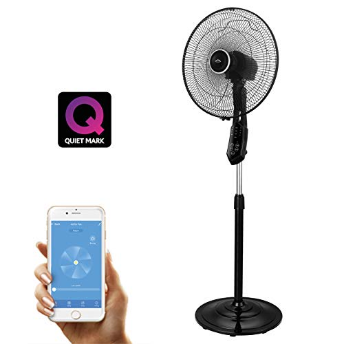 AirGo Smart Fan - Control via Voice Assistants and App (iOS & Android),  Awarded as one of the quietest fans on the market, Includes Night Mode,