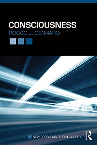 Consciousness (New Problems of Philosophy) (English Edition) -