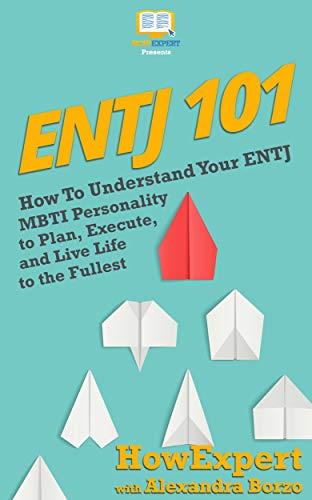ENTJ 101: How To Understand Your ENTJ MBTI Personality to