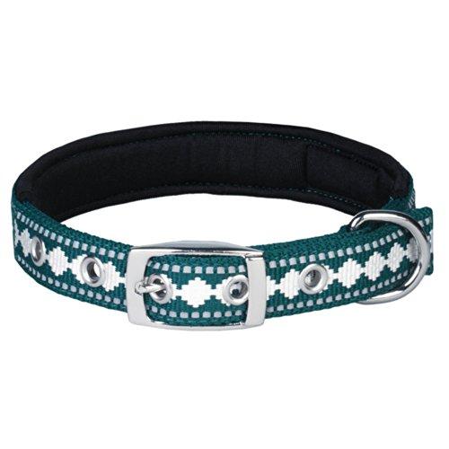 Blueberry Pet Halsbänder für Hunde Klassisches Einfarbige 2 cm M Neopren Reflektor Sicherheitshundehalsband in Petrol mit Jacquardmuster, Passender Hundegeschirr & Hundeleinen erhältlich separate - 3