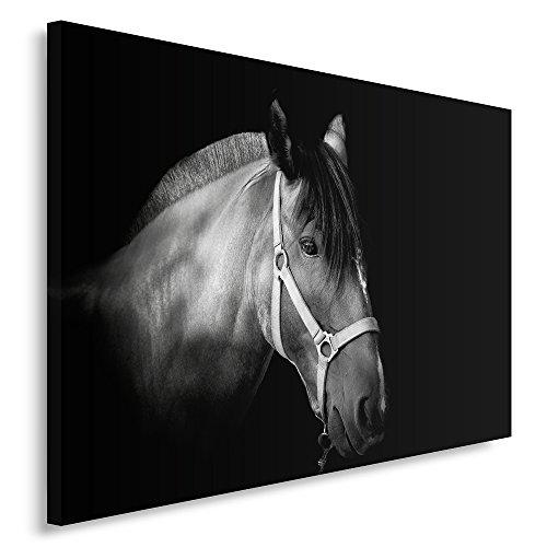 Feeby Frames, Quadro pannelli, Pannello singolo, Quadro