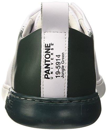 Pantone Unisex-Erwachsene NYC Niedrige Sneaker Verde (Jungle Green)