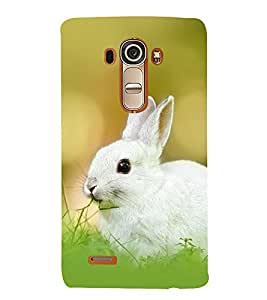 RABBIT A BEAUTIFUL CREATION OF NATURE 3D Hard Polycarbonate Designer Back Case Cover for LG G4 :: LG G4 H815