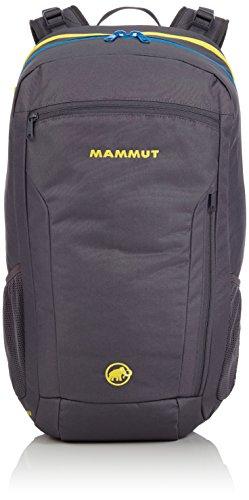 Mammut Tages-Rucksack Xeron Element, grau (smoke), 22 L