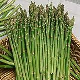 Pinkdose 100 pezzi semi di asparagi inferiore pressur di sangue, di frutta e verdura semi, bonsai piante Semi per la casa & amp; giardino di trasporto