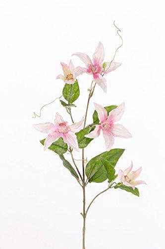 artplants Set 12 x Künstlicher Clematiszweig BARKU, 5 Blüten, zartrosa, 80 cm – 12 Stück Deko Waldrebe/Kunstblumen Clematis