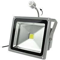 Lampadina, 30W Sensore umana lampada impermeabile del proiettore LED bianco