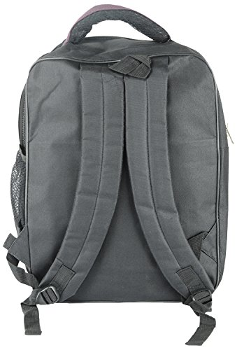 Per-day-deal-22-Ltrs-Purple-Laptop-Backpack