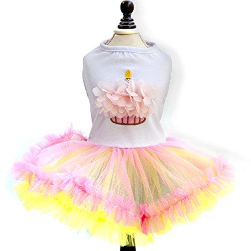 PETCUTE Süß Welpe Hund Rock Dame Camisole Tutu Kleid Haustier Prinzessin Flower Apparel Party Röcke Bekleidung Kostüm Weihnachten Halloween (Kostüm Tragen Welpe Bär)