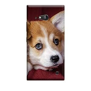 CaseLite Premium Printed Mobile Back Case Cover With Full protection For Nokia Lumia 730 (Designer Case)